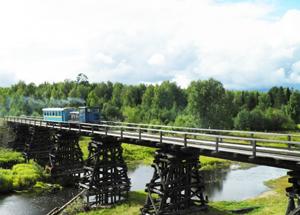 Мост через реку Туру.