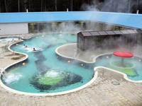Горячий источник. Верхний бор. Термальный бассейн.